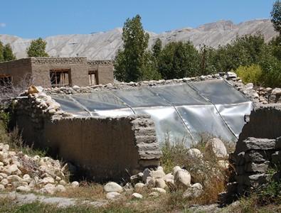 Ein Gewächshaus in Upper Mustang (nicht mit Mitteln der Esel-Initiative gebaut und nicht im Besitz einer allein erziehenden Mutter); die Gewächshäuser, die wir bauen wollen, sind etwas abgewandelt, um natürliche Wärmespeicherung noch besser zu nutzen.