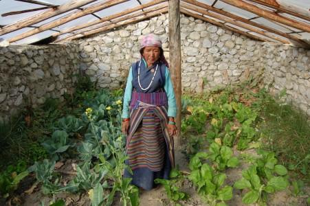 Die älteren Mütter wie Tashi A., die für eine erwachsene sehr behinderte Tochter sorgt, und die Großmütter haben weniger Vielfalt, zwei Gemüse (hier Kohl und Sark), etwas Koreander zum Würzen und Senf, um Samen zu ziehen.