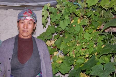 Dawa P. hofft darauf, dass ihre Weinstöcke Trauben ansetzen.